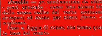 Etimologia sfenoide for Mobilia dizionario